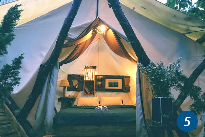 tenda moderna
